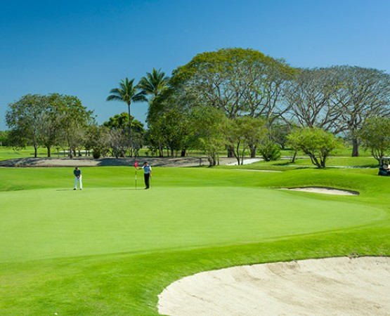 Campo Golf The Nayar Vidanta Nuevo Vallarta Riviera Nayarit